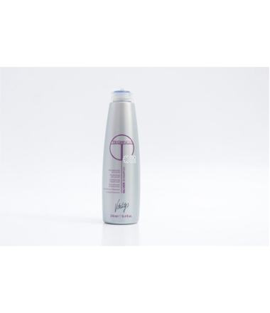 SHAMPOOING TECHNICA SILVER 250ML