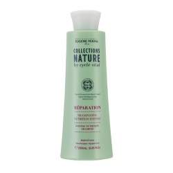NATURE SHAMP NUTRITION INTENSE 250ML