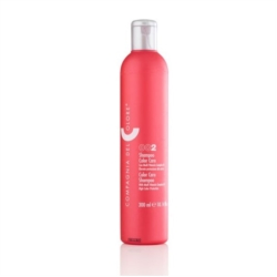 CREME COLOR CARE  300 ML